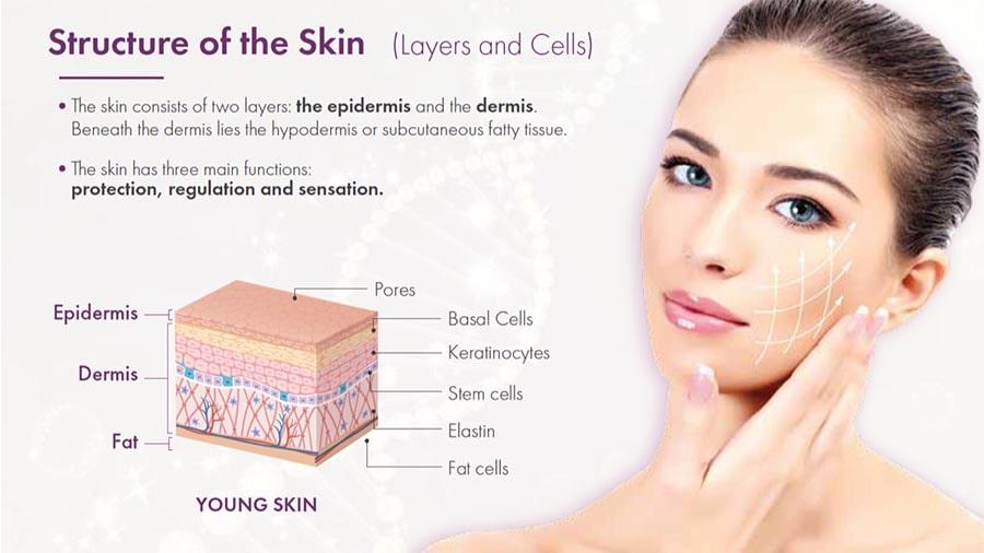 https://colette-camenisch.com/besseres-hautbild-dank-eigenbluttherapie-mit-beauty-skin-activator/